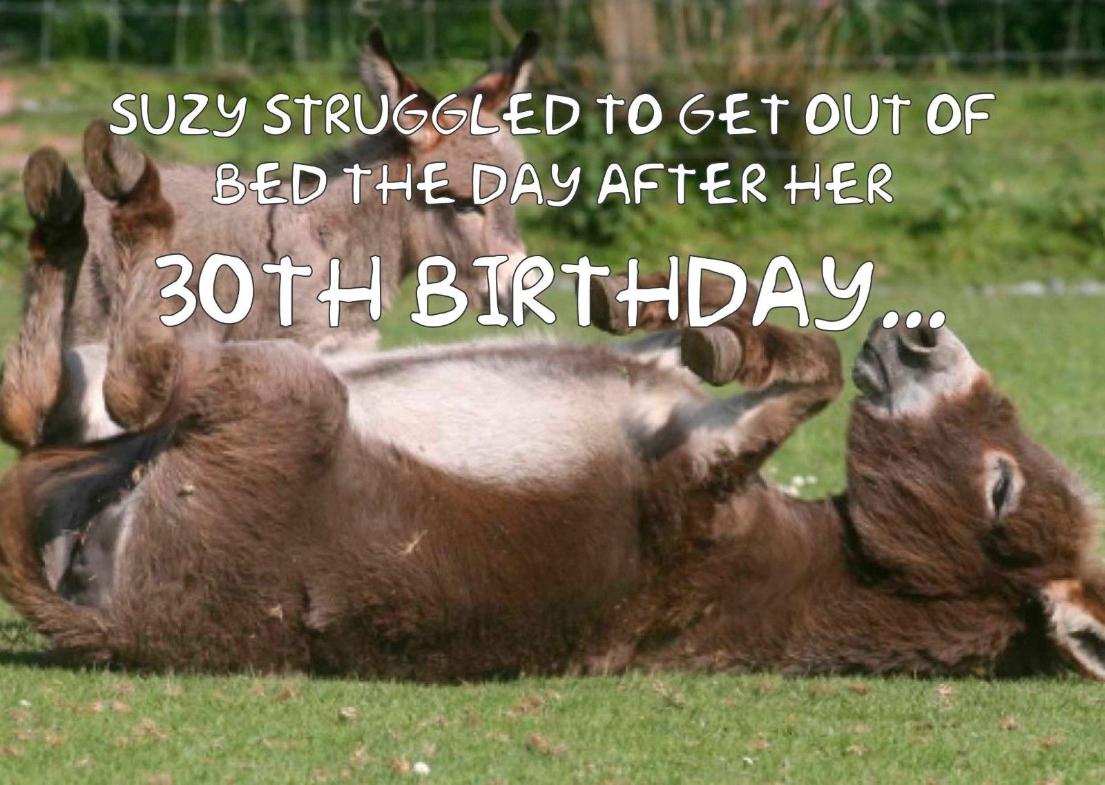 Donkey Cute Animals Personalised Printed Birthday Card Funny