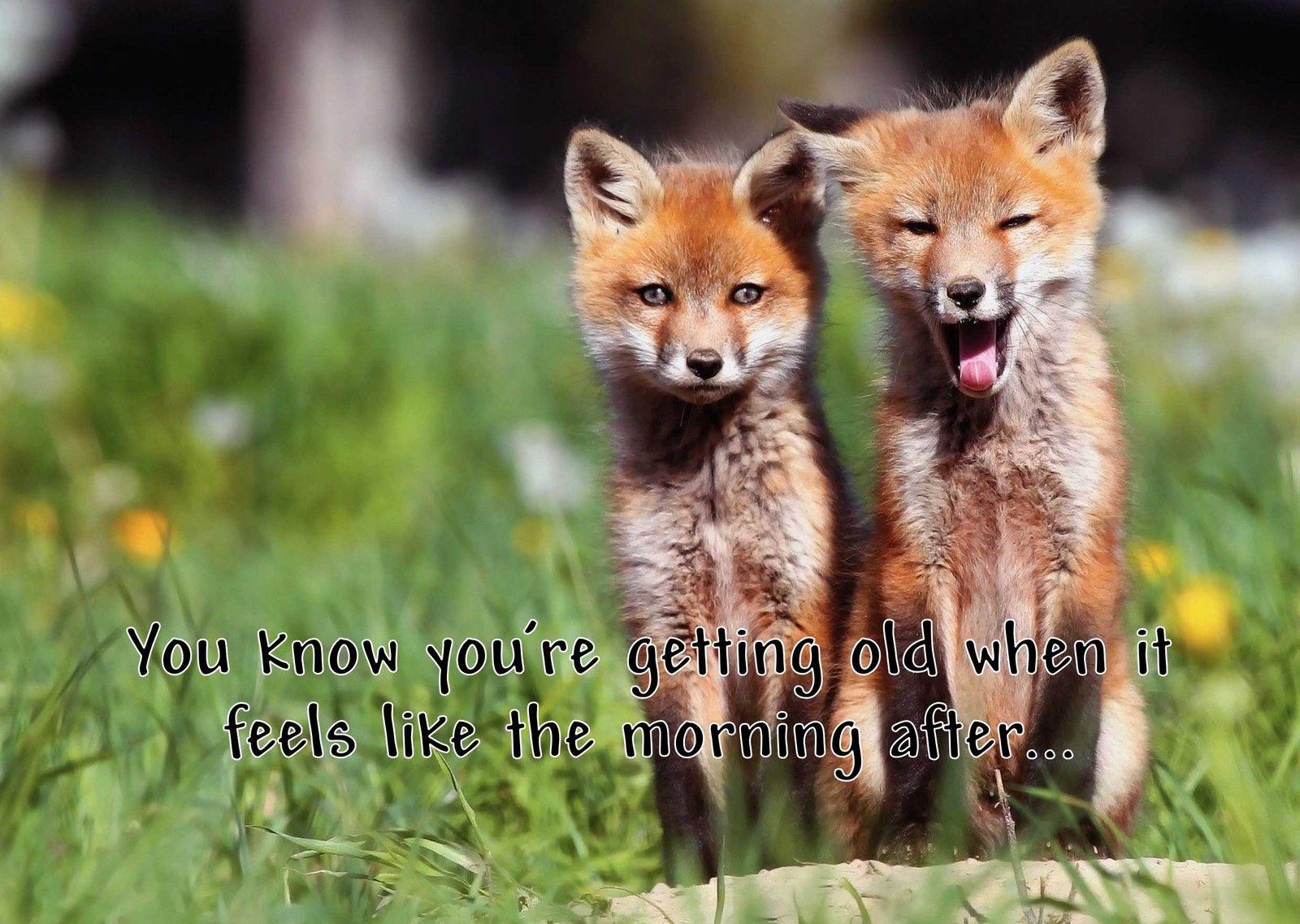 Fox Cute Printed Personalised Birthday Card Animals Old Funny Joke