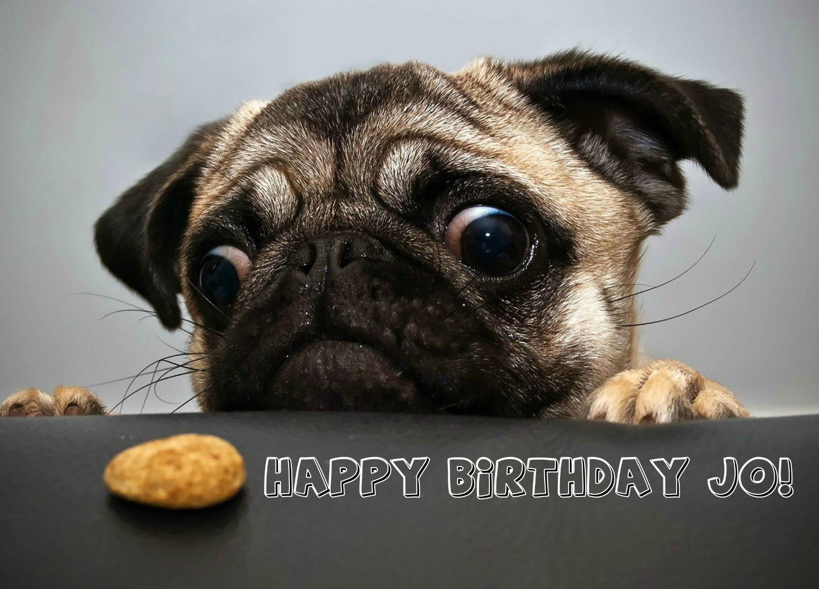 Pug dog puppy animal birthday card personalised printed funny pug dog puppy animal birthday card personalised printed funny bookmarktalkfo Gallery